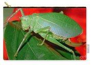 Fork-tailed Bush Katydid Carry-all Pouch