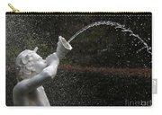 Forsyth Fountain Closeup Carry-all Pouch