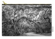Fort Clinch Live Oaks Carry-all Pouch