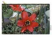 Fosteriana Tulips Red Emperors Carry-all Pouch