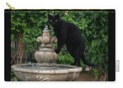 Fountain Cat Carry-all Pouch