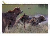 Four Bears Carry-all Pouch