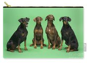 Four Dobermans Sitting Down Carry-all Pouch