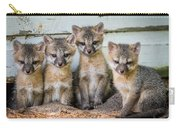 Four Fox Kits Carry-all Pouch