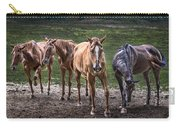Four Horses E137 Carry-all Pouch