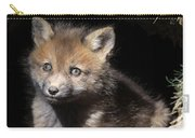 Fox Kit In Den Carry-all Pouch