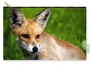 Fox Pup Carry-all Pouch by Fabrizio Troiani