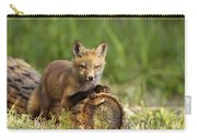 Fox Pup In The Morning Light Carry-all Pouch