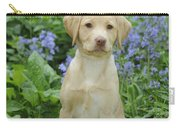 Fox Red Labrador Carry-all Pouch