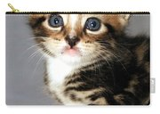 Foxy The Kittens Big Eyes Carry-all Pouch