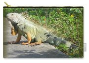 Framed Iguana Carry-all Pouch