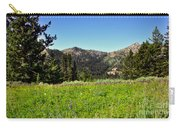 Framed Mountain Landscape Carry-all Pouch