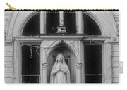 Framed Statue Carry-all Pouch