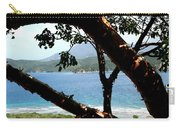 Framed Vista Carry-all Pouch