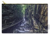Franconia Notch Carry-all Pouch