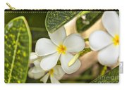 Frangipani Plumeria Flower Carry-all Pouch