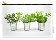 Fresh Herbs In Pots Carry-all Pouch by Elena Elisseeva