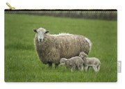Freshly Made - Winter Lambs Carry-all Pouch