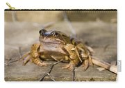 Frog Carry-all Pouch