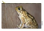 Frog-facing The Wall Carry-all Pouch by Miguel Hernandez