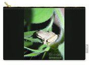 Frog In The Garden Carry-all Pouch