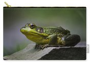 Frog Outcrop Carry-all Pouch