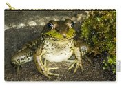 Frog Pose Carry-all Pouch