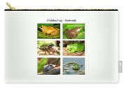 Frogs - Boxed Cards Carry-all Pouch
