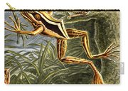 Frogs Detail Carry-all Pouch