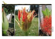 From Bud To Bloom - African Blood Lily Carry-all Pouch