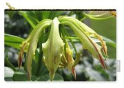 From Bud To Bloom - Gloriosa Named Rothschildiana Carry-all Pouch