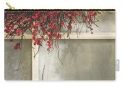 Frosted Windowpane Carry-all Pouch