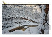 Frozen Creek Carry-all Pouch by Sebastian Musial