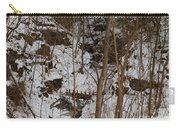 Frozen Dam Carry-all Pouch