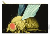 Fruit Fly Sem Carry-all Pouch