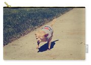 Full Speed Ahead Carry-all Pouch by Laurie Search