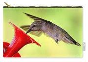 Fun Summer Hummingbird Carry-all Pouch