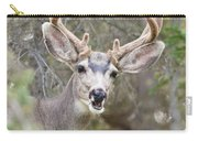 Funny Mule Deer Buck Portrait With Velvet Antler Carry-all Pouch