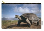 Galapagos Giant Tortoise On Alcedo Carry-all Pouch