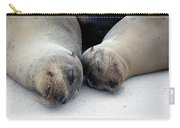 Galapagos Islands 04 Carry-all Pouch