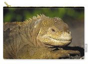 Galapagos Land Iguana Isabella Island Carry-all Pouch