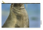 Galapagos Sea Lion Coral Beach Carry-all Pouch