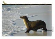 Galapagos Sea Lion In Gardner Bay Carry-all Pouch