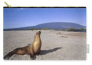 Galapagos Sea Lion Juvenile On Beach Carry-all Pouch