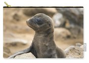 Galapagos Sea Lion Pup Champion Islet Carry-all Pouch