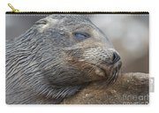 Galapagos Sea Lion Sleeping Carry-all Pouch