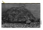 Galapagos Tortoise Baby Carry-all Pouch