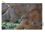 Galapagos Tortoise Carry-all Pouch