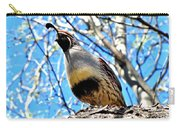 Gambel's Quail II Carry-all Pouch