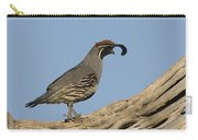 Gambels Quail Male Santa Rita Mts Carry-all Pouch
